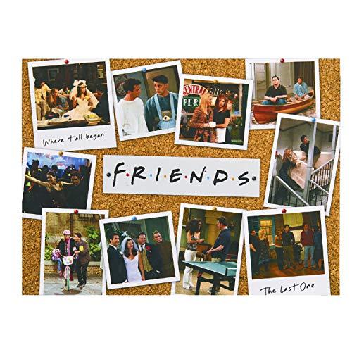 Puzzle Friends - 1.000 Piezas  - Licencia Oficial